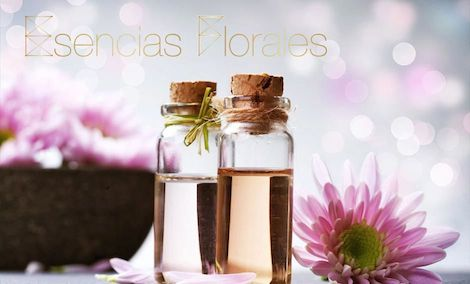 Terapia Natural Esencias Florales